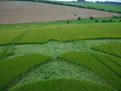类似燕子形状的英国麦田怪圈Clatford Bottom威尔特12/06/05的图片