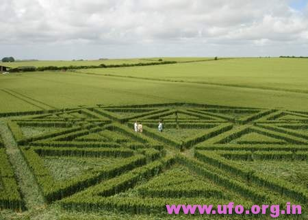 6边形内三角形构造的英国麦田怪圈Trusloe威尔特郡23/06/05的图片