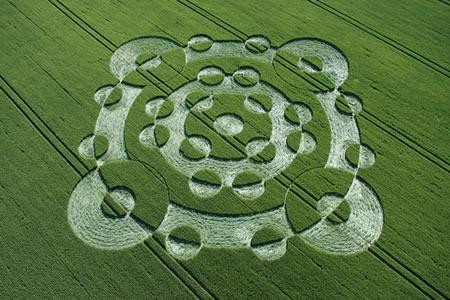 多个重叠圆形的英国麦田怪圈Lurkley Hill威尔特郡22/06/05的图片