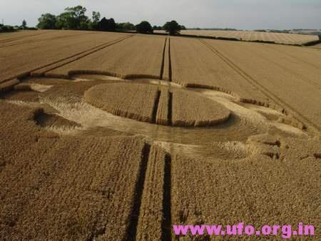 花朵风格的英国麦田怪圈Droxford汉普郡17/07/05的图片