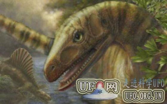 科学家发现大灭绝事件后恐龙祖先化石(图)的图片 第4张
