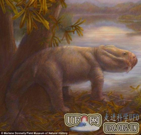 科学家发现大灭绝事件后恐龙祖先化石(图)的图片 第1张