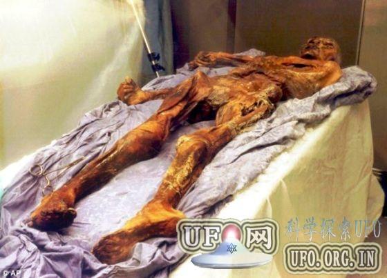 科学家发现冰人奥茨19名现世后代(图)的图片 第2张