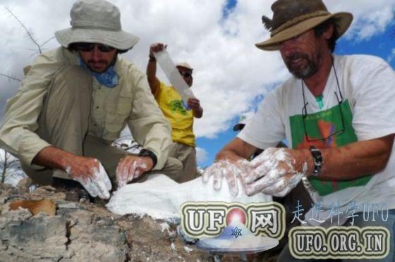 科学家发现大灭绝事件后恐龙祖先化石(图)的图片 第2张