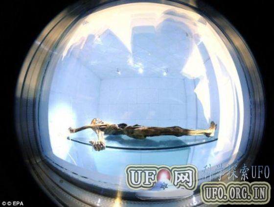 科学家发现冰人奥茨19名现世后代(图)的图片 第3张