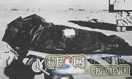 美国罗斯维尔事件66周年:成UFO同义词(图)的图片 第2张