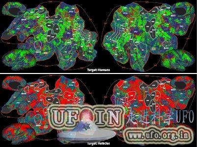最新研究发现大脑可根据搜索目标改变功能的图片 第2张