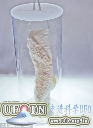 英设计师设计3D打印可再生鞋(图)的图片 第2张
