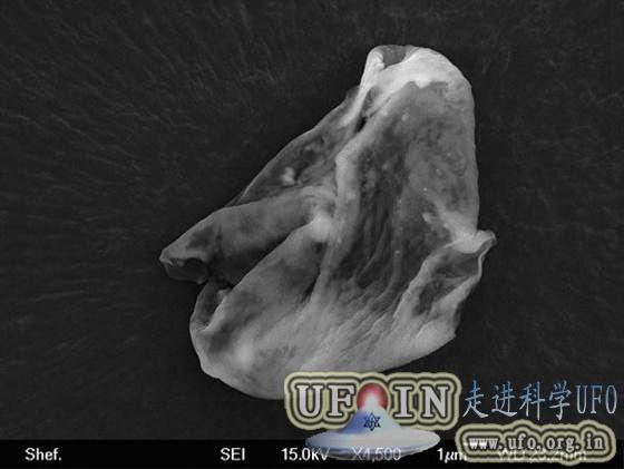 大气层中发现外星生命遭质疑:证据尚不足的图片 第1张