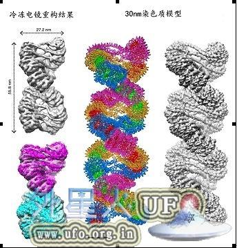 中国科学家率先解析生命信息载体结构奥秘的图片