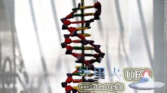 地球科学家第1次成功培育人造真核生物染色体的图片