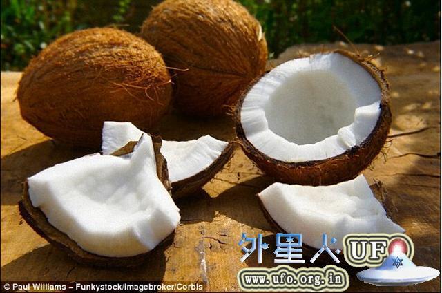 椰子可存储氢气用于制造新一代氢动力汽车
