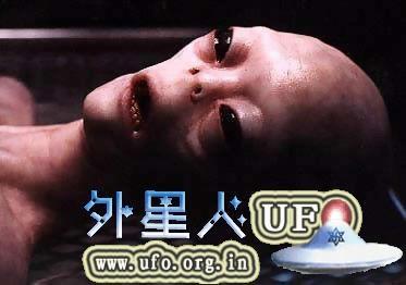 《解剖外星人》电影是真是假?51区视频国语真实版最终真相录像 第2张