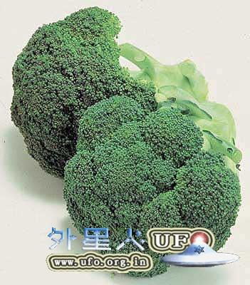 花椰菜的无敌营养你知道吗?的图片 第1张