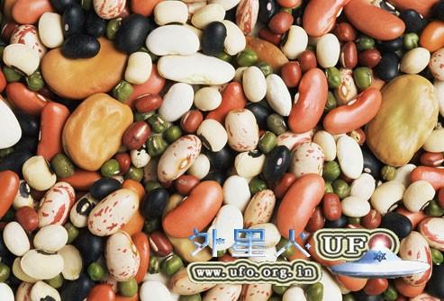 饮食养生:带皮吃黑豆 明显改善贫血的图片 第1张