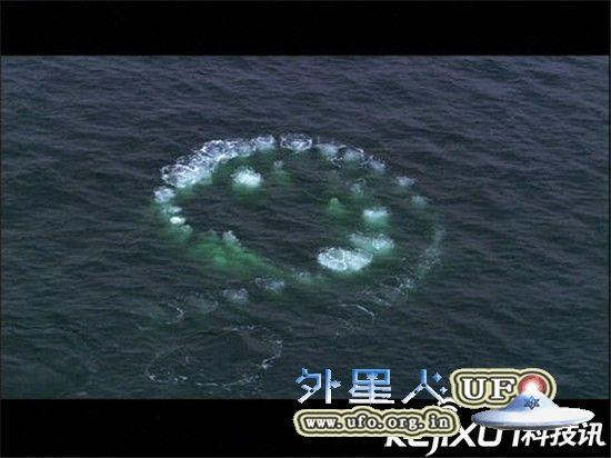 NASA发回地球最新照片 称中国海域疑似出现UFO 第2张