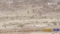 沙特阿拉伯惊现UFO 拍摄者惊叫连连的图片
