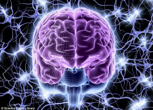 """谷歌公司工程学主管雷-库兹韦尔称,2045年人类能够上传大脑意识至计算机,实现数字化永生,这一事件叫做""""奇点""""  第3张"""