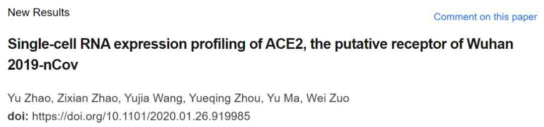 Single-cell RNA expression profiling of ACE2,the putative receptor of Wuhan 2019-nCoV 的论文 第3张