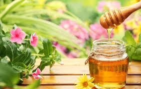 每天喝蜂蜜水会得糖尿病吗?蜂蜜治疗糖尿病原理记载 第53张