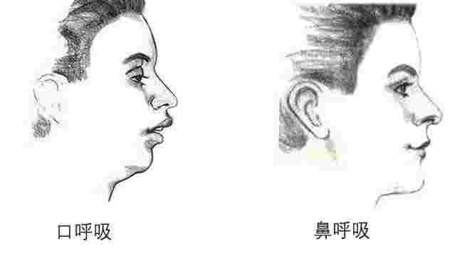 用鼻子呼吸好还是用嘴呼吸好?人类正常睡觉呼吸方式